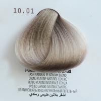 10.01 biondo platino naturale cenere