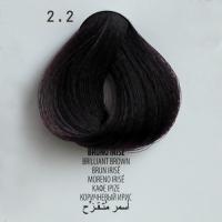 2.2 bruno irise