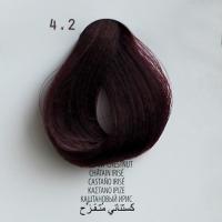 4.2 castano irise