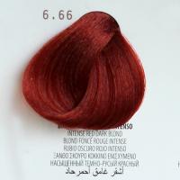 6.66 biondo scuro rosso intenso